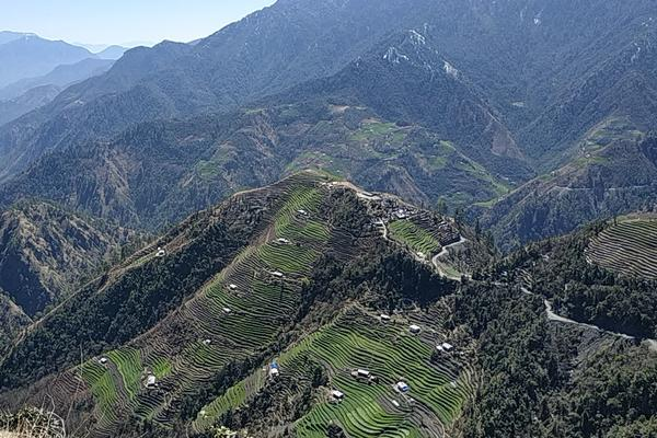 Terraced fields in Baitadi (K.P. Adhikari, 2020)