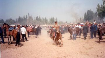 Kashgar horse market